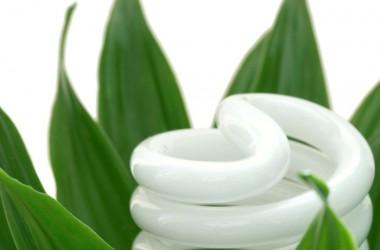 New Eco Bulbs